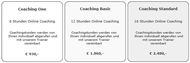 Six Sigma Projekt Coaching